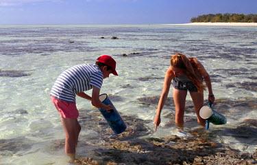 AUS2123 Teenage children reef walk at low tide across the lagoon, or reef flat, of Heron Island on the Great Barrier reef, Queensland, Australia (MR)