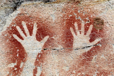 AUS2153 Detail of the Aboriginal rock art at the Art Gallery in Carnarvon Gorge (Carnarvon National Park, Queensland, Australia) showing a close-up of hand prints produced using the stencil art technique