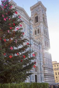 ITA5056AW Italy, Italia. Tuscany, Toscana. Firenze district. Florence, Firenze. Piazza Duomo, Duomo Santa Maria del Fiore and Christams Tree.
