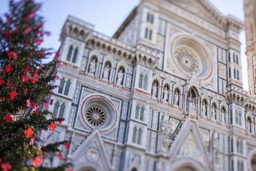 ITA5057AW Italy, Italia. Tuscany, Toscana. Firenze district. Florence, Firenze. Piazza Duomo, Duomo Santa Maria del Fiore and Christams Tree.