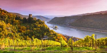 GER8955AW Burg Gutenfels at sunset, Kaub, Rhineland-Palatinate, Germany