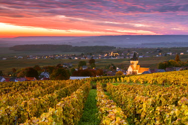 FRA8905AW Colorful sunrise over the vineyards of Ville Dommange, Champagne Ardenne, France