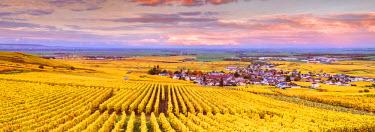 FRA8927AW Sunset over the vineyards of Oger, Champagne Ardenne, France