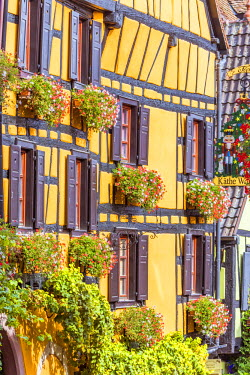 FRA8855AW Typical timber framed houses, Riquewihr, Alsace, France