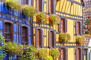 FRA8856AW Typical timber framed houses, Riquewihr, Alsace, France