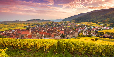 FRA8868AW Sunset over the vineyards surrounding Riquewihr, Alsace, France