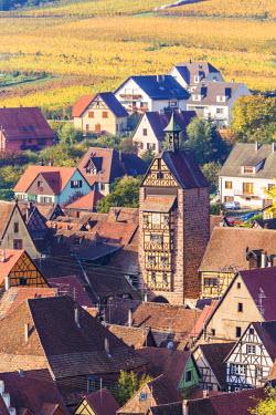 FRA8883AW Riquewihr, Alsace, France