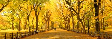 US60879 USA, New York City, Manhattan, Central Park, The Mall