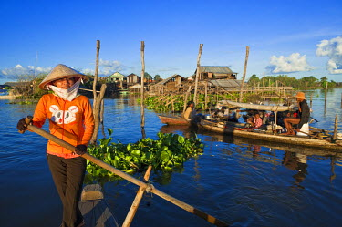 HMS0533655 Cambodia, Kompong Chhnang Province, Chong Kos Vietnamese floating village on Tonle Sap River, visit with the young Maille
