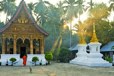 HMS0566120 Laos, Luang Prabang Province, Luang Prabang City, listed as World Heritage by UNESCO, Wat Pha Phay Temple, passage of a monk at dawn