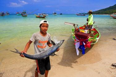 HMS0318146 Thailand, Surat Thani Province, Gulf of Siam, Ko Pha Ngan Island, Ao Chaloklum Beach, back from fishing