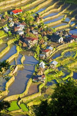 HMS0310166 Philippines, Luzon Island, Ifugao Province, the village of Batad