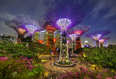 HMS2191361 Singapore, Marina Bay, Garden By the bay, botanic garden, listed as World Heritage by UNESCO, Supertree Grove