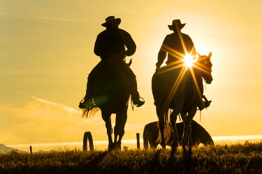 CA01182 Cowboys on horses, sunrise, British Columbia, Canada