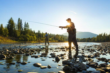 CA01203 Fly fisherman casting & fishing, British Coumbia, B.C., Canada