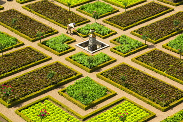 FR05613 Formal gardens, Chateau of Villandry, Indre et Loire, Loire Valley, France