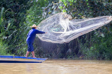 HMS1935219 Malaysia, Sabah state, Kinabatangan river, fisherman with a fishnet