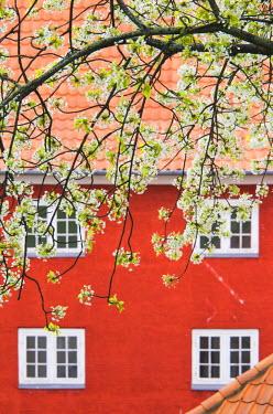DK01101 Denmark, Zealand, Copenhagen, Kastellet, building of the old fortress