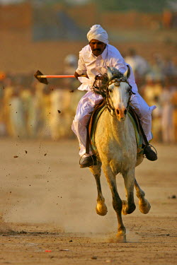 AS28YNI0095 Tent Pegger in action in a competition near Chakwal, Pakistan