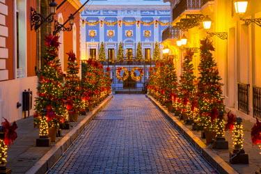 CA27BJN0045 Christmas lights line the road to La Fortaleza, the governors residence, San Juan, Puerto Rico