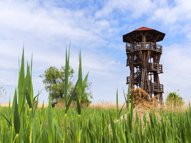 EU13MZW0582 Watch tower at the fish ponds of Hortobagy (Hortobagy halasto) in the Hortobagy National Park during spring, UNESCO world heritage, Hungary