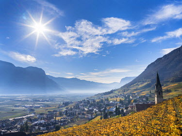 View towards Tramin (Termeno) with vineyards and the valley of the river Etsch towards Salurn. South Tyrol, Italy