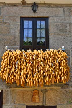 POR8606AW Corn presented during the festivities of Tourem. Peneda Geres National Park, Portugal