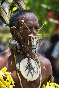 OC04CMI0089 Melanesia, Solomon Islands, Santa Cruz Island group, Malo Island. Villagers in native attire performing traditional folkloric dance. Village elder with large bone and bead ornate nose ring and earring...