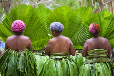 OC07AYO0002 Melanesia, Vanuatu, Lo Island, local women with colored hair in traditional costume carrying fronds.