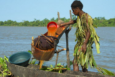 OC12CMI0364 Melanesia, Papua New Guinea, Sepik River, village of Kopar. Woman in palm leaf attire along the riverfront washing and processing sago palm pulp used for typical starchy food staple.