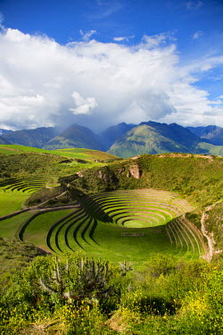 SA17DPB0049 Circular Inca terraces of Moray, Cusco Region, Urubamba Province, District, Peru
