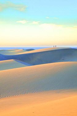 ES09345 Maspalomas Sand Dunes, Gran Canaria, Canary Islands, Spain, Atlantic Ocean, Europe