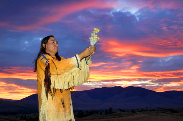 US27AWY0278 Traditional Native American youth, of the Blackfeet Nation, makes an offering of plant medicine to the Great Spirit during a glorious sunset over the Northern Plains (MR)