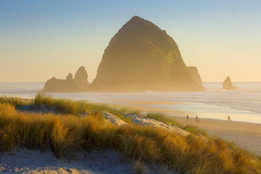 US38BJN0102 Evening sunlight over Haystack Rock and the Cannon Beach, Oregon, USA
