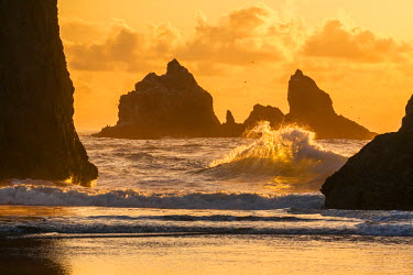 US38BJY0128 USA, Oregon, Bandon. Waves crashing on the shore