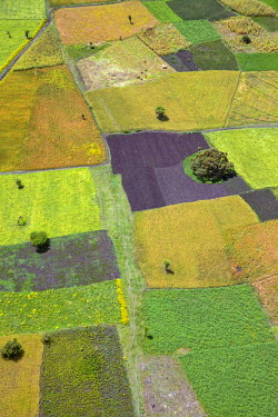 ETH2850 Ethiopia, Oromia Region, Bale Mountains. Intensive farming on the fertile, well watered slopes of the Bale Mountains.