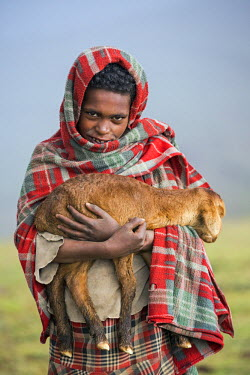 ETH2968 Ethiopia, Amhara Region, Simien Mountains, Debark.  A shy boy with a lamb protects himself from the cold with a blanket over his head.