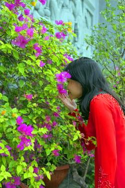 VIT0989 South East Asia, Vietnam, Ho Chi Mihn City (Saigon), Cholon, Nghia An Hoi Quan Pagoda, woman wearing aoi dai dress (MR)