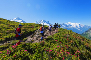 FRA8737 Europe, France, Haute Savoie, Rhone Alps, Chamonix, Chamonix trail running marathon