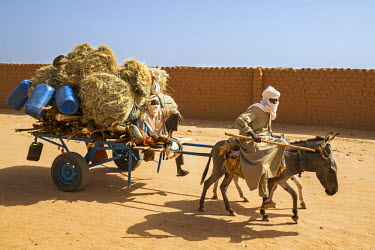 NIG7373 Niger, Agadez. A donkey-drawn cart is a typical, traditional mode of transport in Agadez.