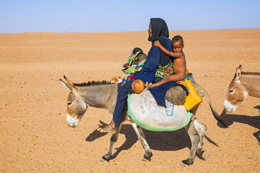 NIG7457 Niger, Agadez, Awiderer. An old Tuareg woman rides a donkey with her grandchildren to a well across the desert.