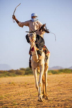 NIG7475 Niger, Agadez, Iferouane. A Tuareg races his camel sitting on a traditional camel saddle.