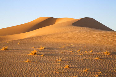 NIG7491 Niger, Agadez, Sahara Desert, Tenere. Scenery in the Tenere desert.