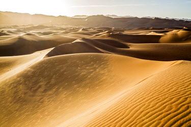 NIG7518 Niger, Agadez, Sahara Desert, Tenere, Kogo. Sand dunes in the vast Tenere Desert.