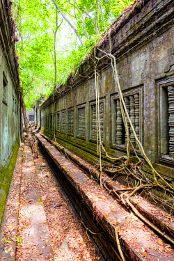 CMB1476AW Prasat Beng Mealea temple ruins, Siem Reap Province, Cambodia