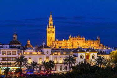 SPA6842AW Night view of city skyline with Cathedral and Giralda bell tower, Seville, Andalusia, Spain