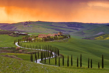 ITA5257AW Valdorcia, Siena, Tuscany, Italy. Road of cypresses leading to a farmhouse with a stormy sunset in the background.
