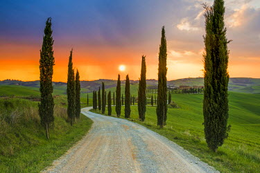 ITA5258AW Valdorcia, Siena, Tuscany, Italy. Road of cypresses leading to a farmhouse with a stormy sunset in the background.