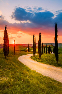 ITA5259AW Valdorcia, Siena, Tuscany, Italy. Road of cypresses leading to a farmhouse with a stormy sunset in the background.