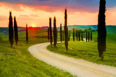 ITA5260AW Valdorcia, Siena, Tuscany, Italy. Road of cypresses leading to a farmhouse with a stormy sunset in the background.